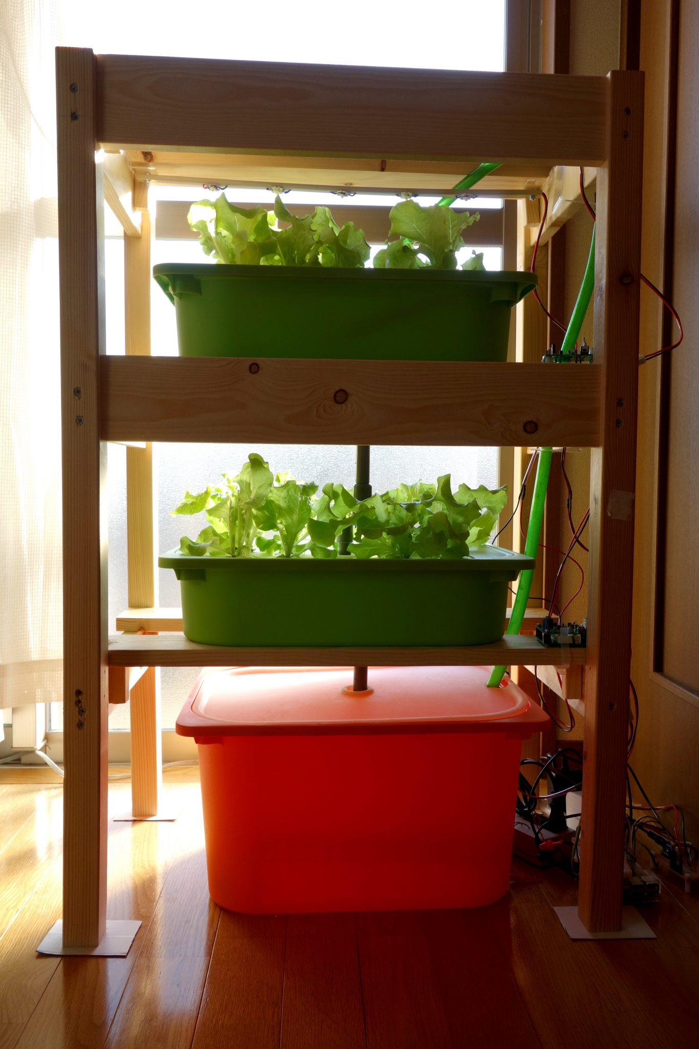 自作の水耕栽培装置 LEDとポンプ付き